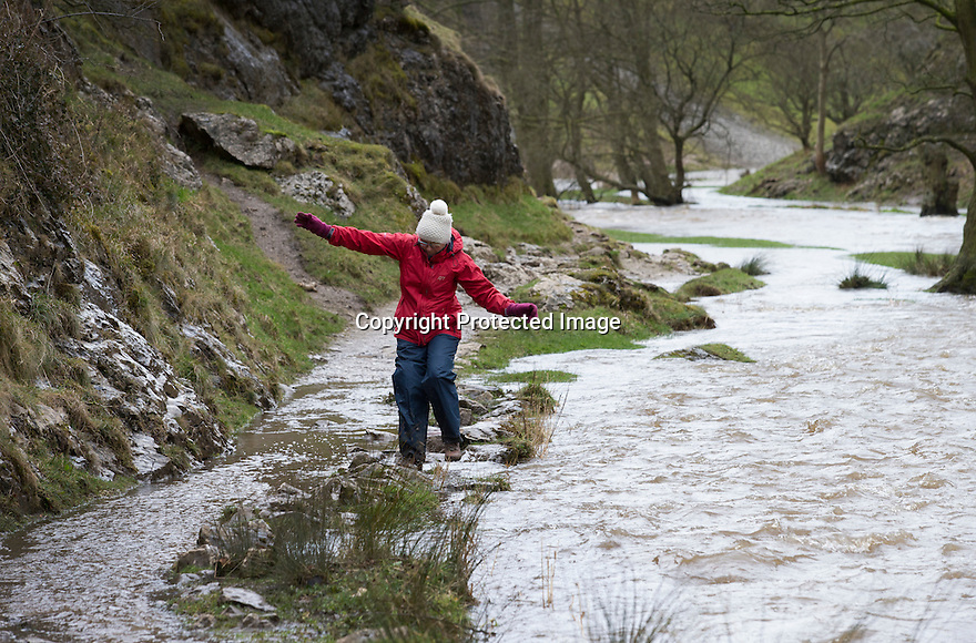 31/03/15<br /> <br /> A woman braves her way along the edge of the river Dove as gale force winds and torrential rain makes the river flood over the paths and the famous Stepping Stones in Dovedale, in the Derbyshire Peak District.<br /> <br /> All Rights Reserved: F Stop Press Ltd. +44(0)1335 418629   www.fstoppress.com.