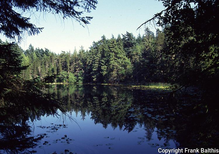 Lake at Moran State park