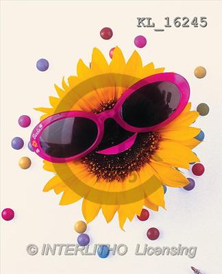 Interlitho, Alberto, FLOWERS, portrait, macro, photos, sunflower, glasses, KL, KL16245,#F# Blumen, flores, retrato