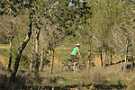 Israel, Negev, cycling in Beeri forest