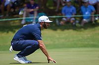 Dustin Johnson (USA) lines up his putt on 9 during round 4 of the WGC FedEx St. Jude Invitational, TPC Southwind, Memphis, Tennessee, USA. 7/28/2019.<br /> Picture Ken Murray / Golffile.ie<br /> <br /> All photo usage must carry mandatory copyright credit (© Golffile | Ken Murray)