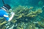 Nature Photography underwater