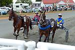 NELSON, NEW ZEALAND - JANUARY 10: Nelson Harness Racing Interislander Summer Festival, Richmond Park Showgrounds, Nelson, New Zealand. Friday 10th January 2020. (Photos by Barry Whitnall/Shuttersport Limited)