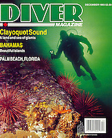 "DIVER Magazine Cover Story - ""Clayoquot Sound - A Land and Sea of Giants"".  Written and Photographed by Dale Sanders.  2000 Word Article and Photos."