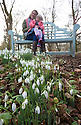 2016_01_28_snowdrops_rode_hall