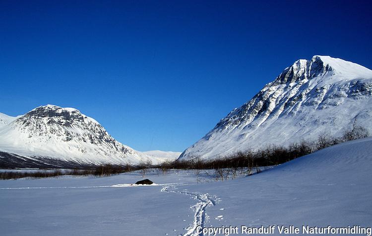 Gnistrende vinterdag i Rapadalen i Sarek. ----- Sunny winter day in Rapadalen in Sarek.
