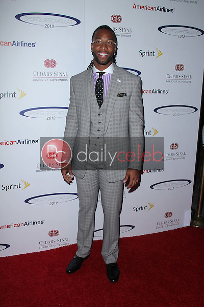 Larry Fitzgerald<br />