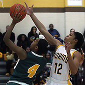 Farmington Hills Harrison at Rochester Adams, Girls Varsity Basketball, 1/16/15