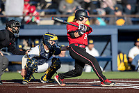 Rutgers Scarlet Knights designated hitter Luke Bowerbank (29) swings the bat against the Michigan Wolverines on April 26, 2019 in the NCAA baseball game at Ray Fisher Stadium in Ann Arbor, Michigan. Michigan defeated Rutgers 8-3. (Andrew Woolley/Four Seam Images)