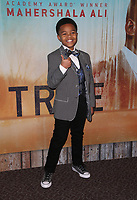 LOS ANGELES, CA - JANUARY 10: Isaiah C. Morgan, at the Los Angeles Premiere of HBO's True Detective Season 3 at the Directors Guild Of America in Los Angeles, California on January 10, 2019. Credit: Faye Sadou/MediaPunch