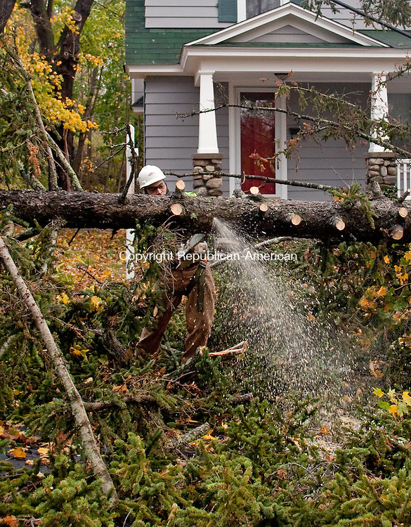 WATERBURY, CT-30 October 2012-103012BF04-- David Delgado from Waterbury, an employee of Lewis Tree Service, Inc., works at removing a White Pine tree that fell Monday night at 24 Vernon Street in Waterbury. The tree broke at it's roots according to Delgado and fell across power lines. The remnants of Hurricane Sandy are still being felt across Connecticut Tuesday as the cleanup begins.  Bob Falcetti Republican-American