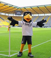 """DFB Maskottchen """"Paule"""" begrüßt die Fans - 05.06.2019: Öffentliches Training der Deutschen Nationalmannschaft DFB hautnah in Aachen"""