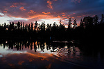 A duck is silhouetted in the sunset on American Lake near Tacoma, Washington. Jim Bryant Photo. ©2010. All Rights Reserved.