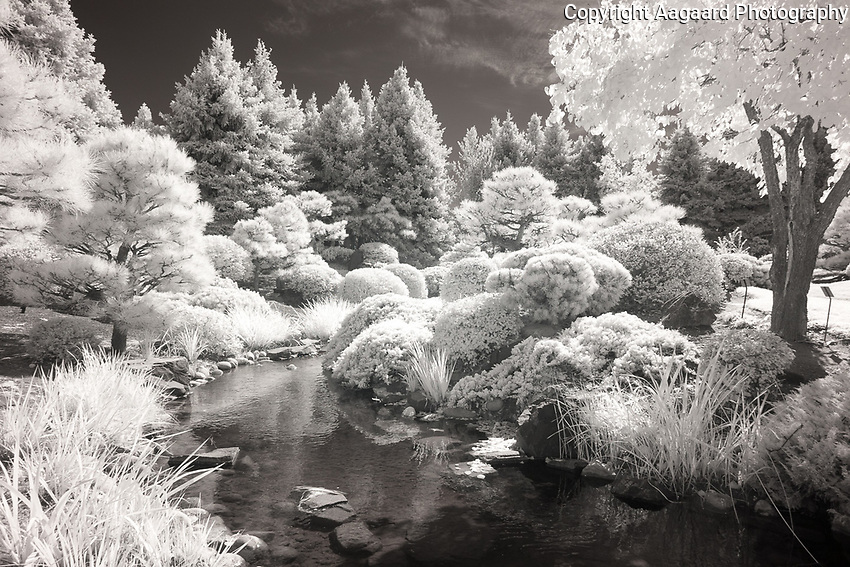 Denver Botanical Garden infrared