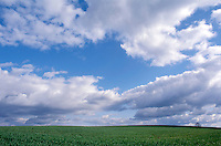 Clouds over rolling field of green.