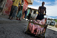A Cuban man pushes a cart loaded with the body of a dead pig intended to be eaten during an Afro-Cuban religious celebration in Santiago de Cuba, Cuba, 3 August 2009. The Palo religion (Las Reglas de Congo) belongs to the group of syncretic religions which developed in Cuba amongst the black slaves, originally brought from Congo during the colonial period. Palo, having its roots in spiritual concepts of the indigenous people in Africa, worships the spirits and natural powers but can often give them faces and names known from the Christian dogma. Although there have been strong religious restrictions during the decades of the Cuban Revolution, the majority of Cubans still consult their problems with practitioners of some Afro Cuban religion.