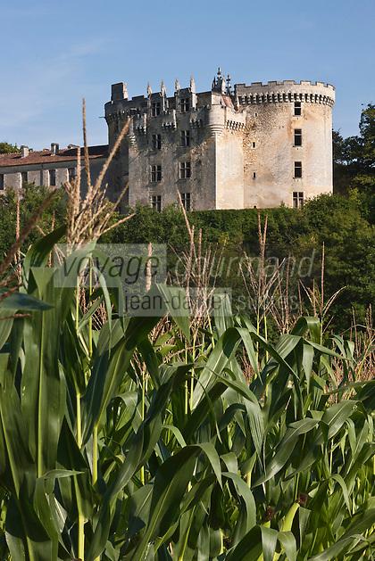 Europe/France/Aquitaine/24/Dordogne/<br /> La Chapelle-Faucher: Château de La Chapelle-Faucher sur les bords de la Côle