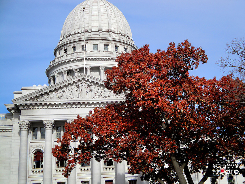 Wisconsin State Capitol framed by brown oak leaves.