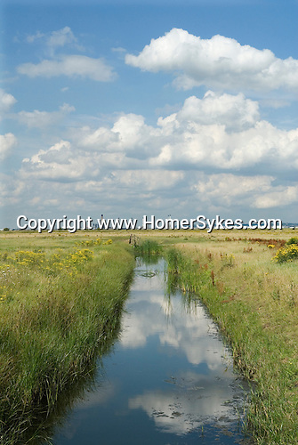 Cliffe marsh Isle of Grain Hoo Peninsular Kent UK. Proposed possible site of new London airport. In distance north side of the River Thames estuary.