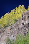 Canyon Wall near Henson Creek, Colorado
