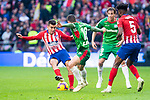 Atletico de Madrid Angel Martin Correa and Thomas Teye and Deportivo Alaves Jonathan Calleri and Tomas Pina during La Liga match between Atletico de Madrid and Deportivo Alaves at Wanda Metropolitano in Madrid, Spain. December 08, 2018. (ALTERPHOTOS/Borja B.Hojas)
