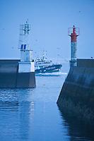Europe/France/Bretagne/29/Finistère/Douarnenez: Le port - Bateau rentrant de la pêche au petit matin