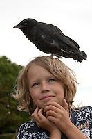 Junge, Kind mit junger, verwaister Rabenkrähe, Vogel wurde in Wildtier-Auffangstation großgezogen und ist deshalb zahm geworden, Wildtierhilfe Fiel, Krähe, Corvus corone, Aaskrähe, carrion crow