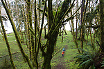 Hoh River, Hoh River Trust, The Nature Conservancy, TNC, Emily Howe, Ryan Haugo, Kyle Smith, forest ecologists, stream ecologists, assessing, forest habitat, river habitat, spring, 2017 Olympic Peninsula, Washington State, Pacific Northwest, USA,