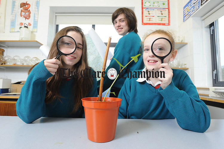Ailish Kenny, Katie Donnellan and James Kelly of St John Bosco Community College, Kildysart whose project involves the mapping and propagation of Japanese Knotweed. Photograph by John Kelly.