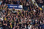 Stockholm 2014-03-21 Ishockey Kvalserien AIK - R&ouml;gle BK :  <br /> AIK supportrar<br /> (Foto: Kenta J&ouml;nsson) Nyckelord:  supporter fans publik supporters