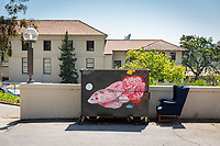 Haines Hall. One of many dumpsters painted by students as part of the Dumpster Art Project, sponsored by the Office of Sustainability. Photographed June 8, 2018.<br /> (Photo by Marc Campos, Occidental College Photographer)