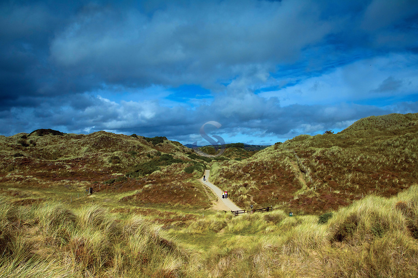 Murlough National Nature Reserve and Dundrum Bay, Dundrum, County Down