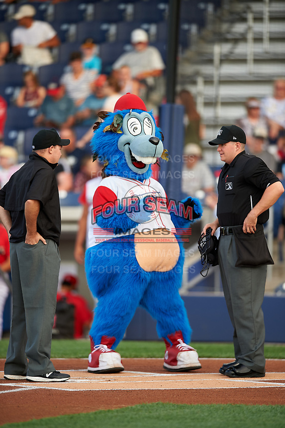 Williamsport Crosscutters mascot Boomer with umpires Jake Botek (left) and Kyle Nichol (right) before a game against the Mahoning Valley Scrappers on July 8, 2017 at BB&T Ballpark at Historic Bowman Field in Williamsport, Pennsylvania.  Williamsport defeated Mahoning Valley 6-1.  (Mike Janes/Four Seam Images)