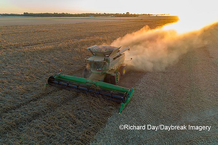 63801-13313 Harvesting soybeans at sunset in fall-aerial  Marion Co. IL