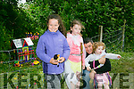 l-r Niamh Healy, Ciara O'Brien, Niamh O'Brien and Mike O'Brien at Kilflynn Enchanted Fairy Festival on Sunday