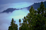 Clouds and mist over Caldera de Taburiente. La Palma, Canary Islands, Spain