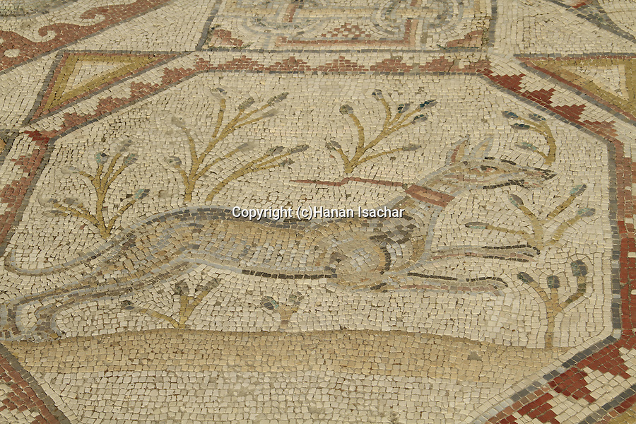 Tel Aviv-Yafo, a mosaic floor from Beth Guvrin, 6th century AD, on display at the Eretz Israel Museum
