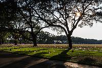 War Veterans Memorial Cemetery on Memorial Day 2014 in St. Petersburg, Florida