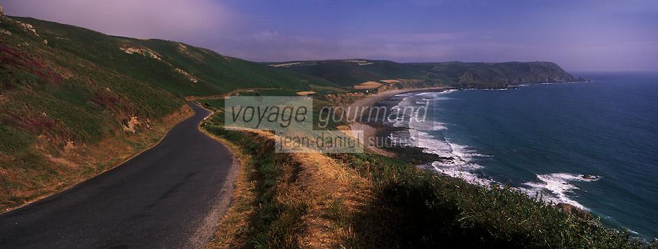 Europe/France/Normandie/Basse-Normandie/50/Manche/Presqu'île de la Hague/ Env de Jobourg:Lande de Bruyère à la  Baie d'Ecalgrain et en fond le Nez de Jobourg
