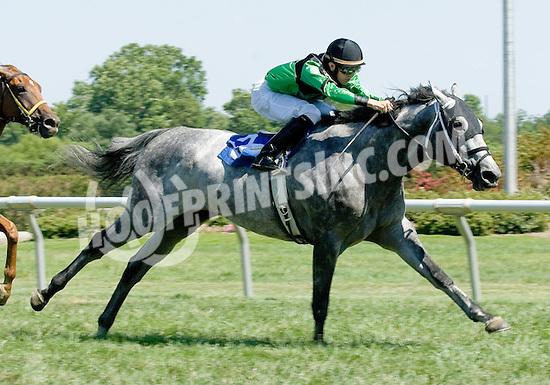 Lighthouse winning at Delaware Park on 7/26/10