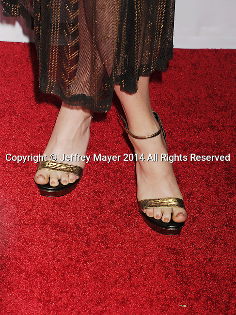 HOLLYWOOD, CA - NOVEMBER 11: Actress Grace Gummer (shoe detail) at the 'The Homesman' premiere during AFI FEST 2014 presented by Audi at the Dolby Theater on November 11, 2014 in Hollywood, California.