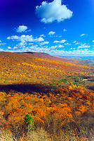 Hamburg Wildlife Management Area, Sussex County, New Jersey