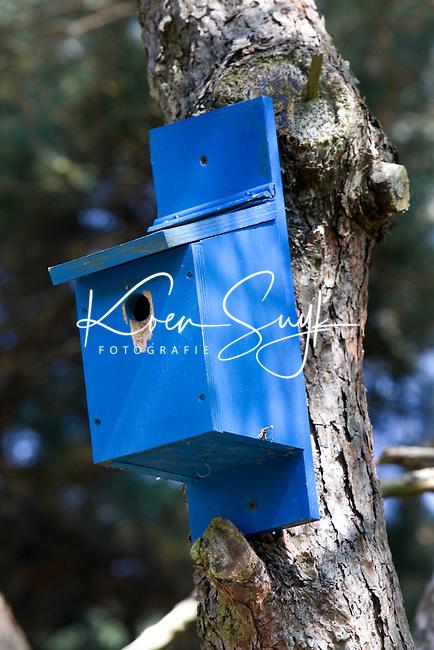 MOLENSCHOT - Vogelhuisje als 150meter markering. GC Toxandria COPYRIGHT KOEN SUYK