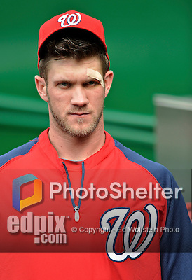 16 May 2012: Washington Nationals outfielder Bryce Harper stands outside the dugout prior to facing the Pittsburgh Pirates at Nationals Park in Washington, DC. The Nationals defeated the Pirates 7-4 in the first game of their 2-game series. Mandatory Credit: Ed Wolfstein Photo
