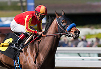 March 3, 2012. Mile High Magic by Roman Ruler breaks his maiden at Santa Anita Park in Arcadia, CA.