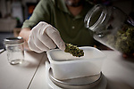 Mario Abad packages medicinal marijuana for delivery at Canny Bus, a nonprofit pot delivery service, January 11, 2011..CREDIT: Max Whittaker for The Wall Street Journal.Bay Area - Cannybus