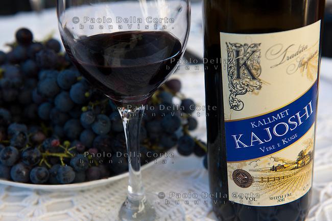 Albania - Shkodër nel villaggio di Shtoj Nazmi Kajoshi produce un vino rosso di uva Kallmet un uva locale. Nei vigneti si notano ancora le punte delle lance in difesa da un eventuale attacco dal cielo costruite durante la dittatura di Enver Hoxha