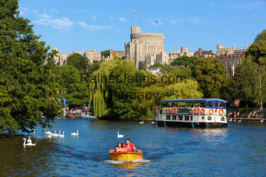 Great Britain, England, Berkshire, Windsor: sightseeing boats and swans on River Thames with Windsor Castle | Grossbritannien, England, Berkshire, Windsor: Schloss Windsor an der Themse