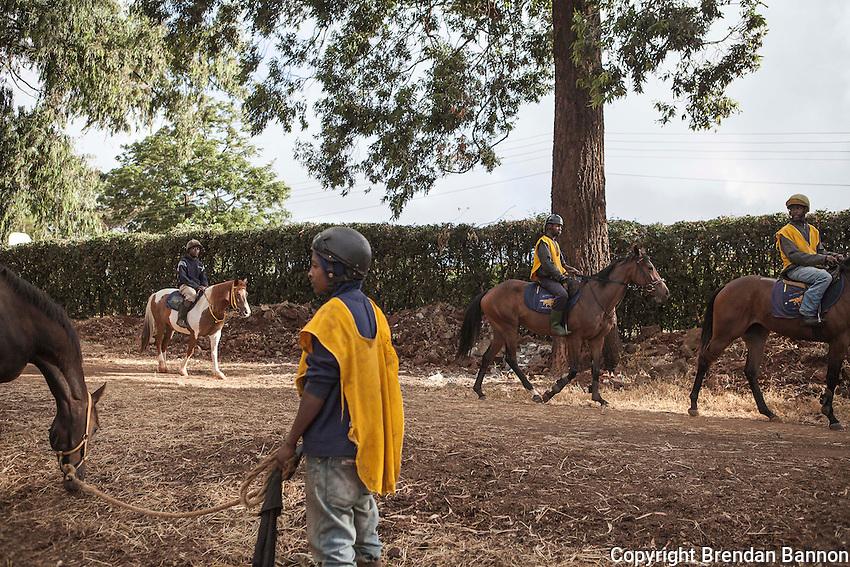 Horses warming up in the morning  at Nairobi, Kenya. March 13, 2013. Photo: Brendan Bannon