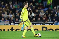 Torwart Michael McGovern (Nordirland, Northern Ireland) - 05.10.2017: Nordirland vs. Deutschland, WM-Qualifikation Spiel 9, Windsor Park Belfast